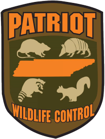 Patriot Wildlife Control Serving Collierville & Germantown TN (901) 287-1932